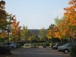Herbst_klein.jpg